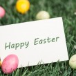 Happy Easter greeting — Stock Photo #24146621
