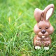 Chocolate bunny sitting in grass — Stock Photo #24146767