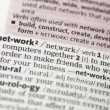 Network definition — Stock Photo #24146865