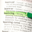 Stock Photo: Learning definition highlighted