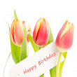 Three tulips with a happy birthday card — Stock Photo