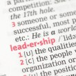 Leadership definition — Stock Photo #24147803