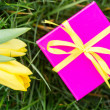 Pink gift box with yellow ribbon and yellow tulips — Stock Photo #24147885