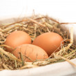 Three eggs in basket — Stock Photo