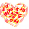 Tulips petal in a heart shape — Stock Photo