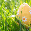 Easter egg nestled in the grass — Stockfoto