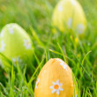 Easter eggs in grass — Stock Photo #24148415