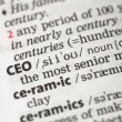 CEO definition — Stock Photo