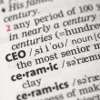 CEO definition — Stock Photo #24148855