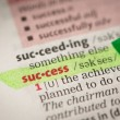Stock Photo: Success definition highlighted in green
