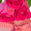 Pink roses resting on pink polka dot wrapped present — Stock Photo