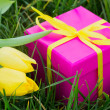 Pink gift box and yellow tulips — Foto Stock