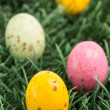 Colourful easter eggs — Stock Photo #24149861