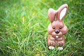 Chocolate bunny sitting in the grass — Stock Photo