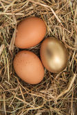 Gold egg in the straw with others — Stock Photo