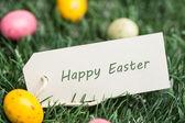 Mutlu Paskalya etiketi ile Paskalya yumurtaları — Stok fotoğraf