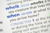 Whelk and when definition — Stock Photo