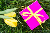 Pink gift box with yellow ribbon and yellow tulips — Stock Photo