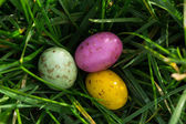 Small easter eggs nestled in the grass — Stock Photo