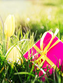 Pink gift box with yellow easter egg and yellow tulip — Stock Photo