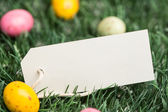 Blank tag with easter eggs — Stock Photo