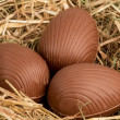 Chocolate easter eggs in straw — Stock Photo