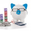 Blue and white piggy bank wearing glasses with cut costs blocks — Stock Photo