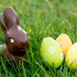 Chocolate bunny in the grass with easter eggs — Stockfoto
