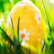 Easter egg nestled in the green grass  — Stock Photo
