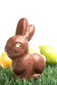 Čokoládové králíček seděl na trávě s velikonoční vajíčka za — Stock fotografie