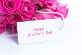 关闭一束美丽的粉红色玫瑰与快乐的妈妈 — 图库照片