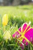 Pink gift box with yellow easter egg and tulip — Stock Photo