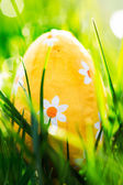 Paasei ligt in het groene gras — Stockfoto