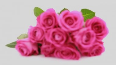 Focus on pink roses as a gift — Stock Video