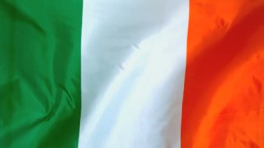 Irish flag waving in the wind — Stock Video