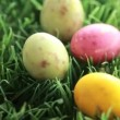 Stock Video: Easter eggs dropping in grass