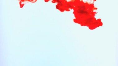 Tinta vermelha girando na água — Vídeo Stock