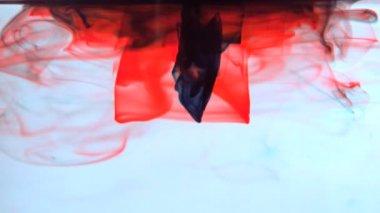Inchiostro rosso e nero che turbinano in acqua — Video Stock
