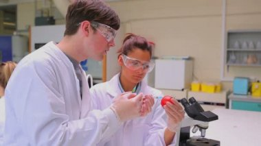 Students experimenting with a tomato — Stock Video