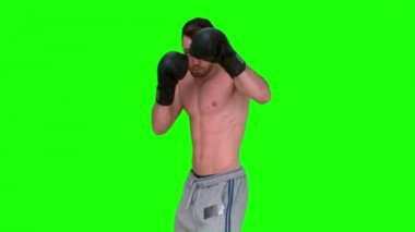 Man boxing in the air on green background — Stock Video