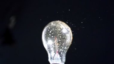 Bulb being crushed by a shot — Wideo stockowe