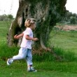 Little girl and little boy running around a big tree — Stock Video #25660181