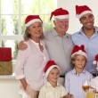Stock Video: Family posing for Christmas photo