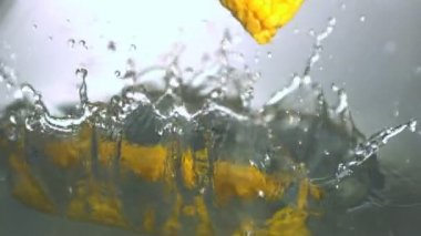 Corn cobs falling in water — Stock Video
