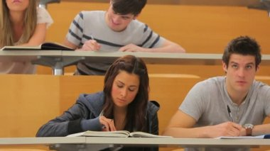 Groupe d'étudiants travaillant dans un amphithéâtre — Vidéo