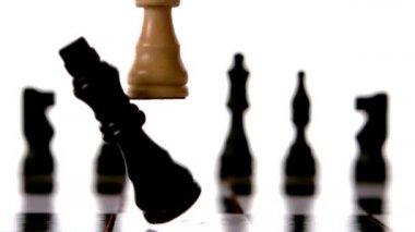 Weiße könig klopfen über schwarzer könig beim schach — Stockvideo
