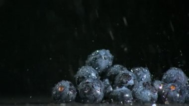 Water falling on blueberries on black background — Stock Video