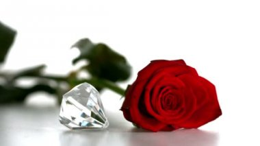 Diamond spinning beside red rose on white background — Stock Video