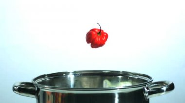 Habanero and scotch bonnet chilis falling in saucepan with mushroom — Stock Video