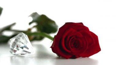 Diamond spinning beside red rose — Stock Video